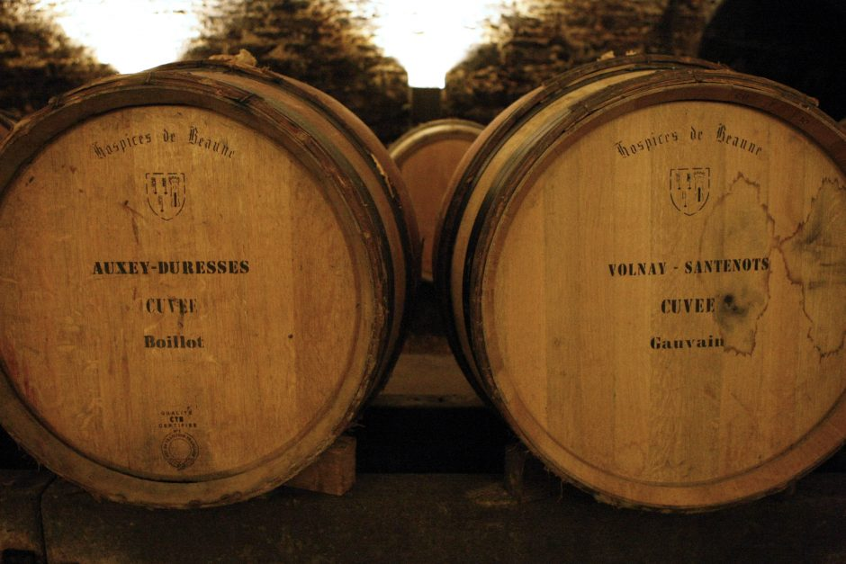 Burgundijos vynuogynus