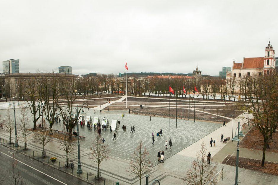 Teikia projektą dėl Vyčio Lukiškių aikštėje: pasirašė 41 Seimo narys