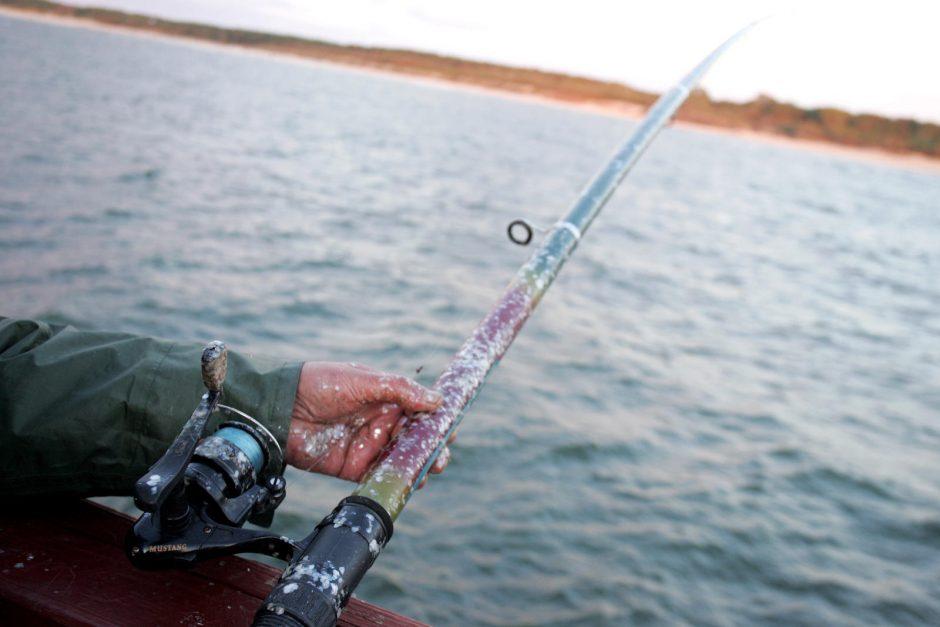 Žvejai padėjo pasiklydusiam ūdriukui