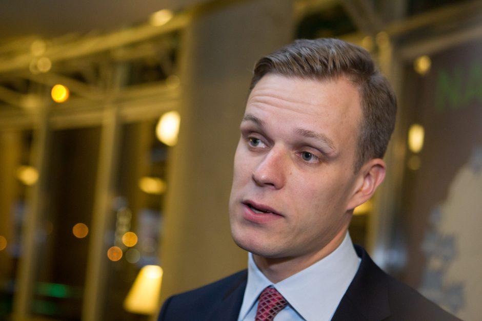 G. Landsbergis siūlo Vilniaus Latvių gatvę pervadinti B. Nemcovo vardu