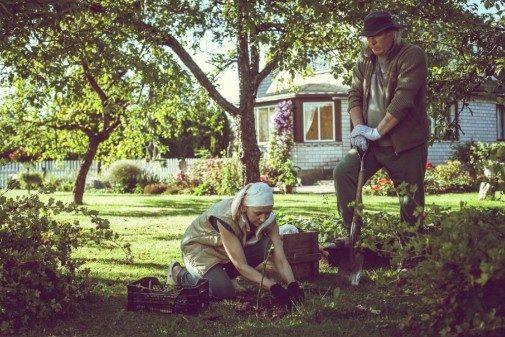 Vilniuje – nemokami Baltijos šalių kino seansai