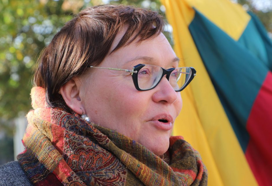 A. Maldeikienė surengė mitingą – gina imigravusius verslininkus