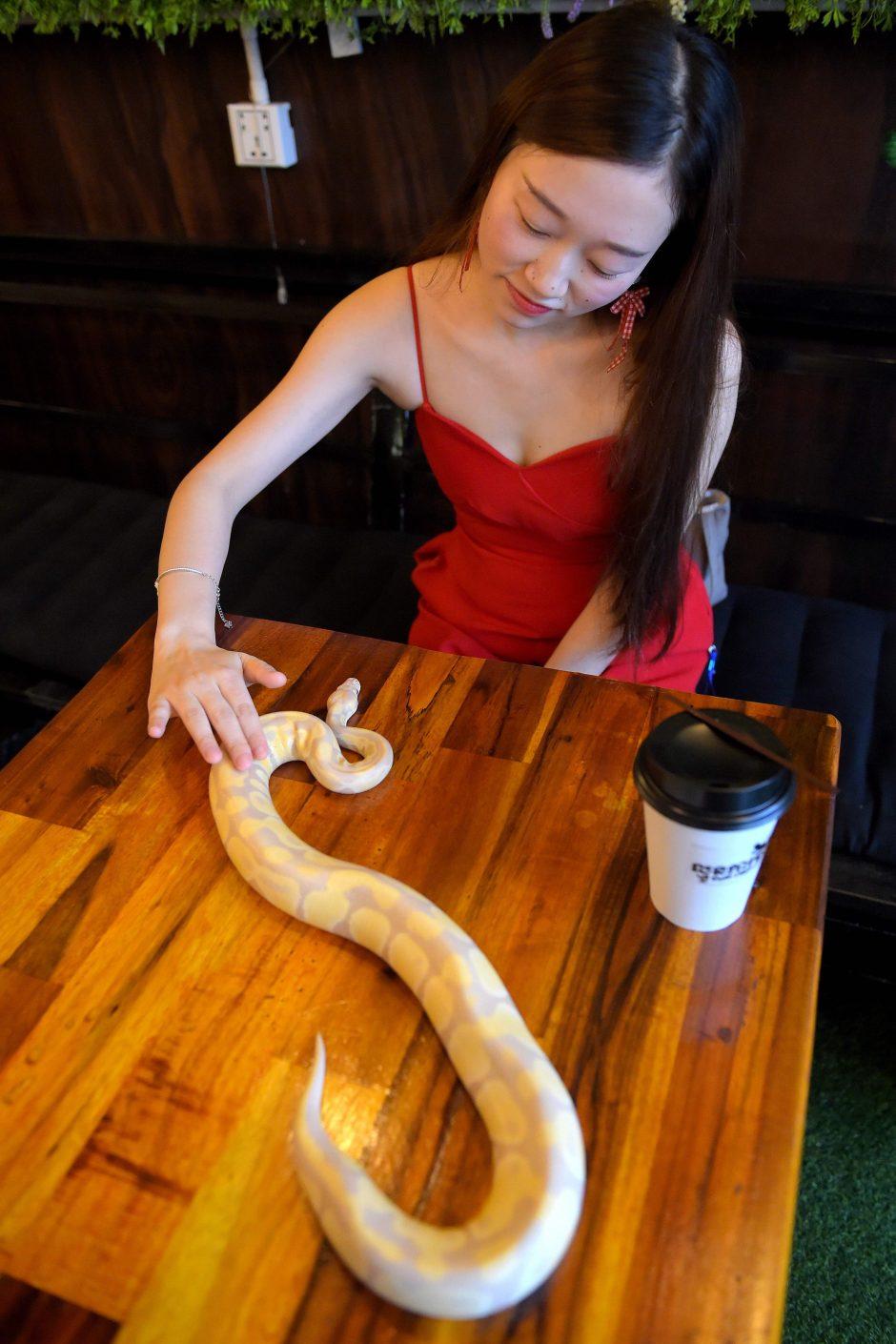 Roplių kavinė bando užkariauti žmonių širdis