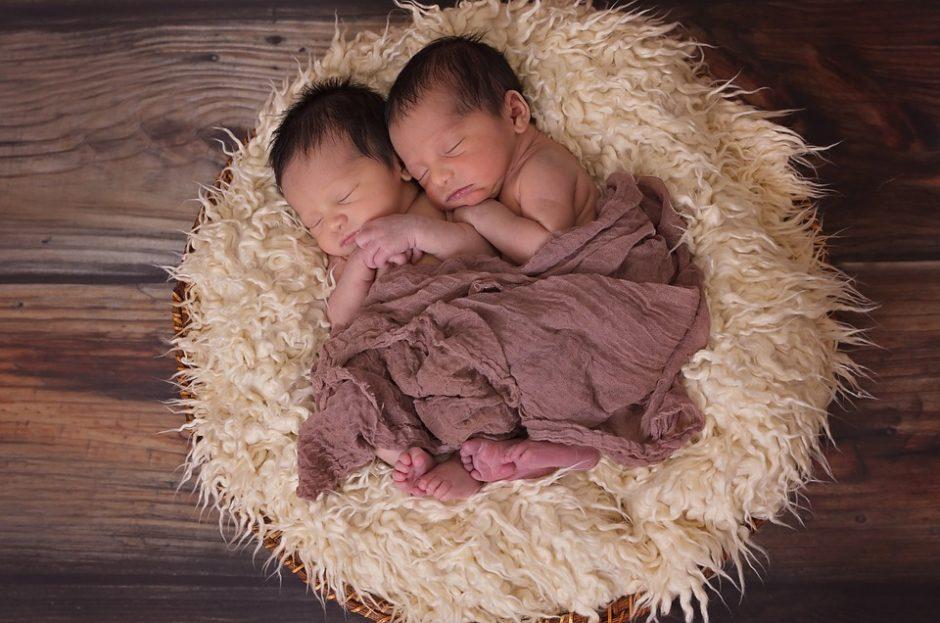 Dvynės kone tą pačią valandą pagimdė berniukus