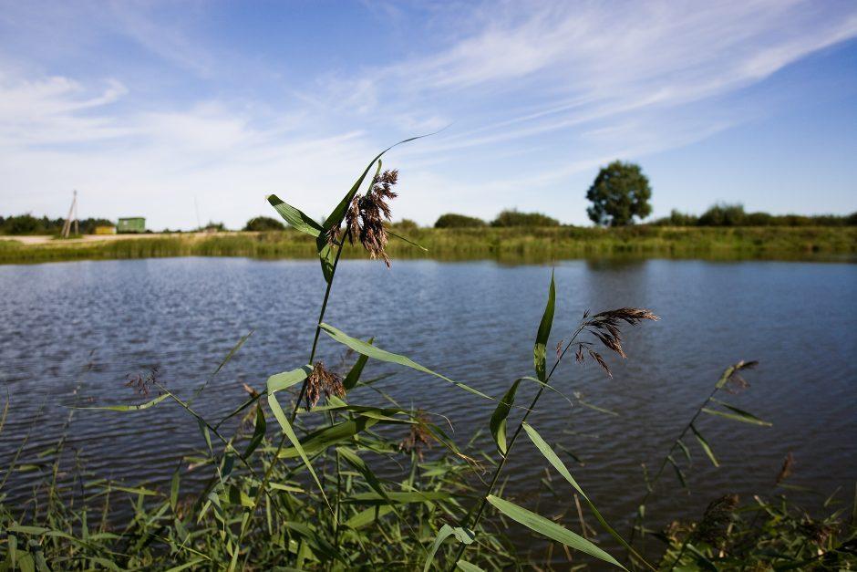 Nelaimė Telšiuose: Masčio ežere rasta paskendusi moteris