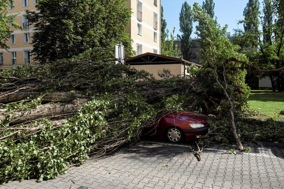 Lenkijoje siautėjant audroms žuvo keturi žmonės