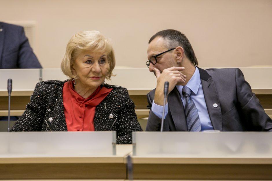 Etikos sargė E. Gudišauskienė pati supainiojo interesus?