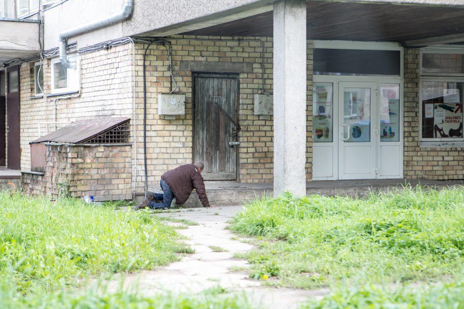 Benamių viešbutis po krūmais: vieni nori būti pakrikštyti, kiti – numirti