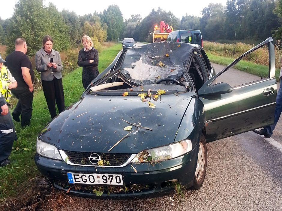 Penktadienio rytą briedis pražudė į Klaipėdą važiavusį jauną vyrą