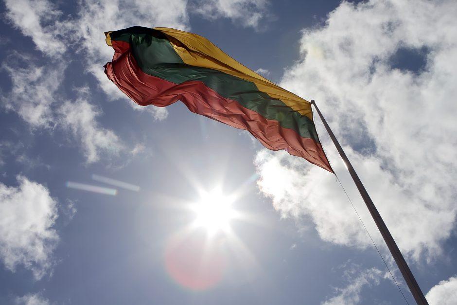 Nervina vėliavų tikrinimas