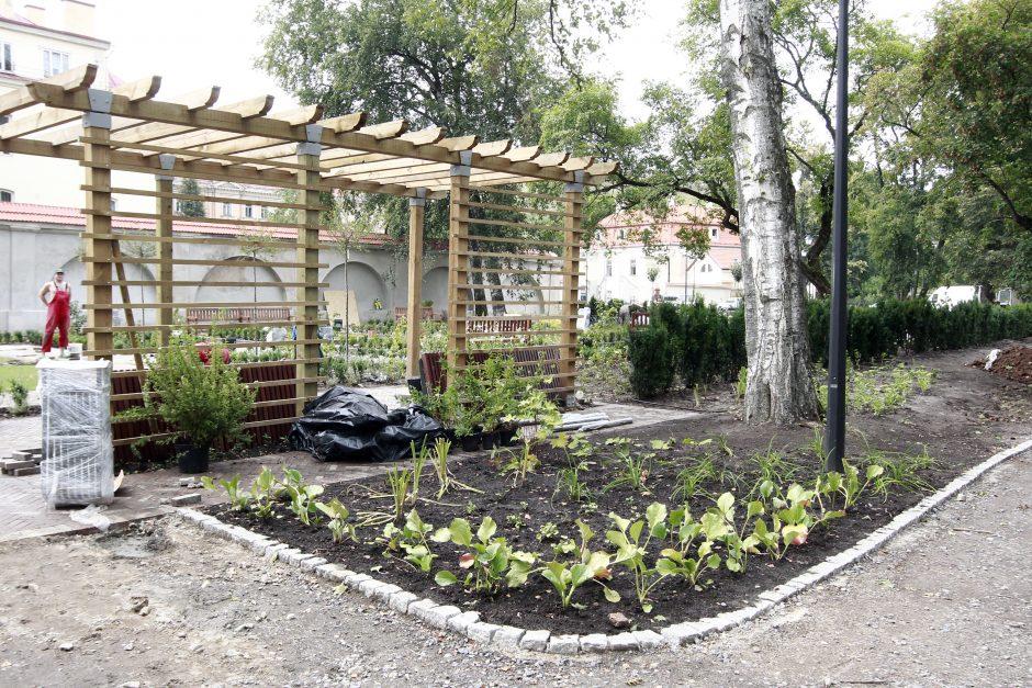 Žvilgsnis į netrukus atsidarysiantį Bernardinų sodą