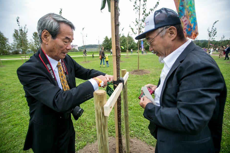 Sakurų parkas simbolizuos draugystę