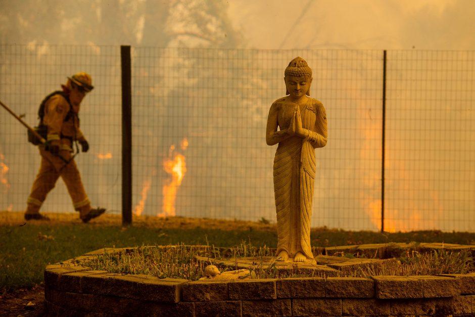 Kalifornijoje siaučia miškų gaisrai
