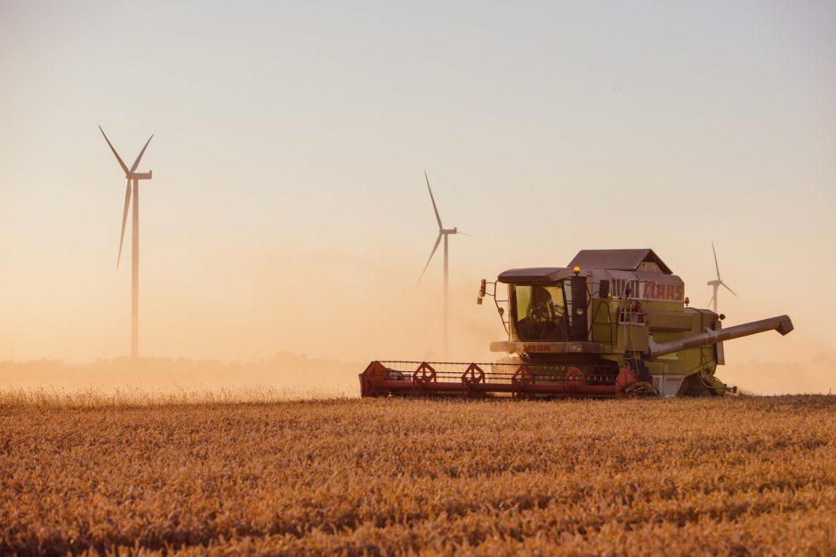 Siūloma riboti tiesiogines išmokas stambiems ūkininkams