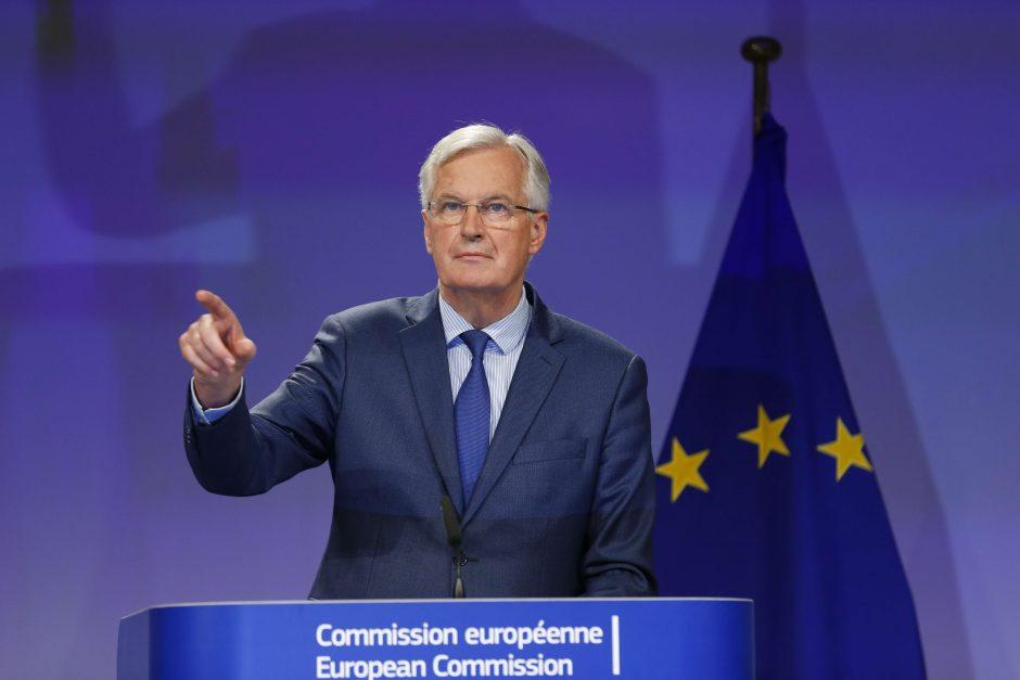 """Derybininkas: """"Brexit"""" derybose padaryta nedaug pažangos"""
