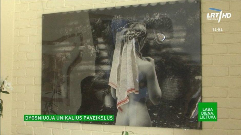 Tekstilininkė auditoriją pavergė siuvinėtais fotoplastikiniais paveikslais