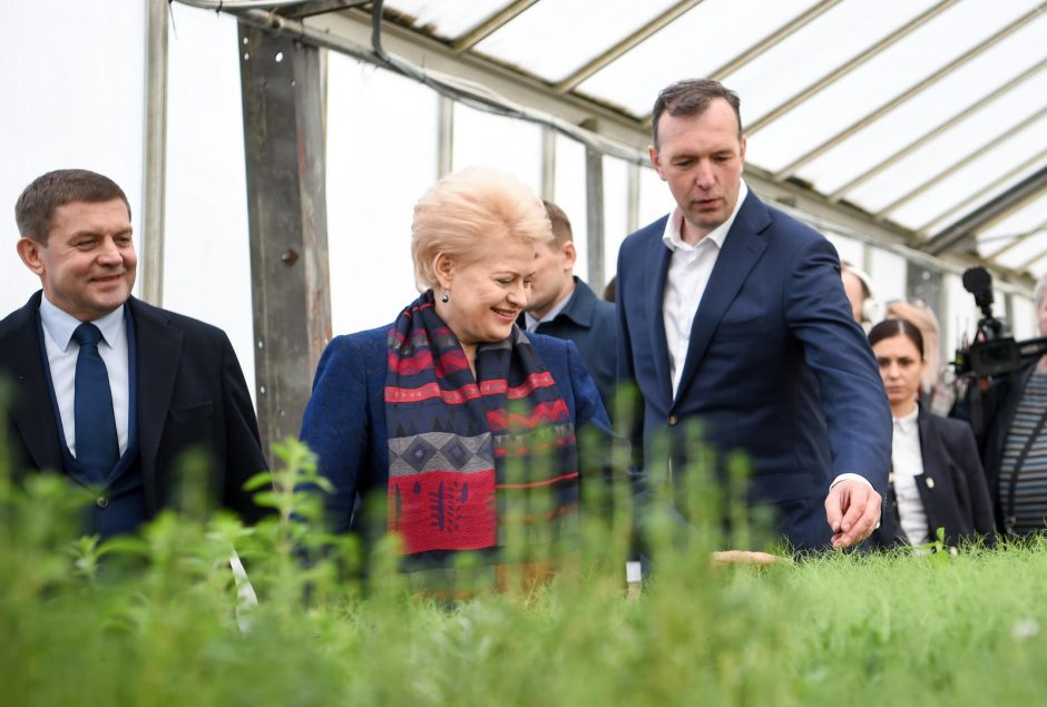 D. Grybauskaitė kviečia emigrantus imtis verslo Lietuvoje