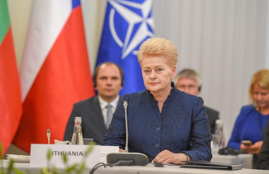 Baltijos ir Vidurio Europos šalių vadovų susitikimas Lenkijoje