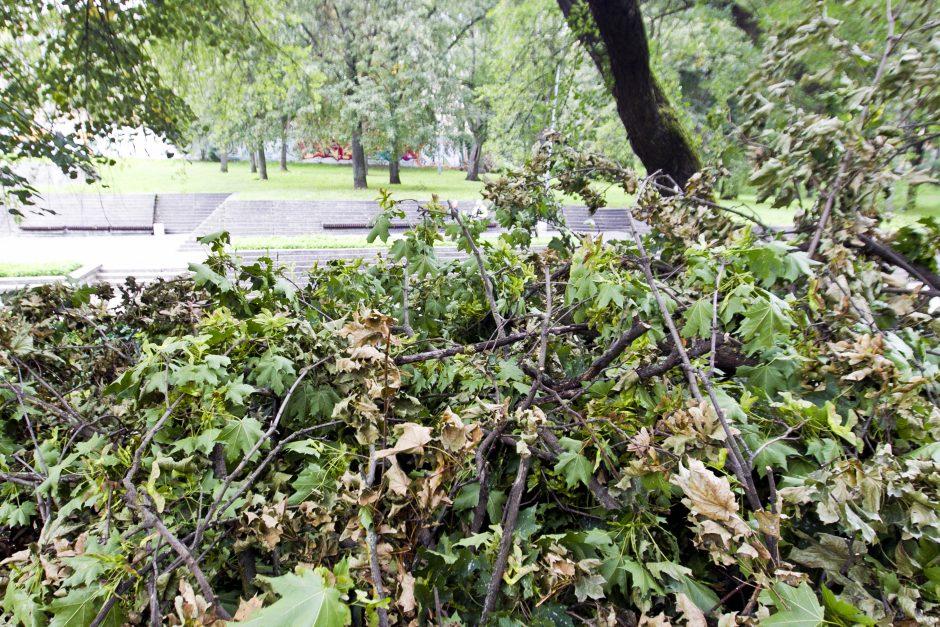 Po škvalo Reformatų parkas tvarkomas tik dabar