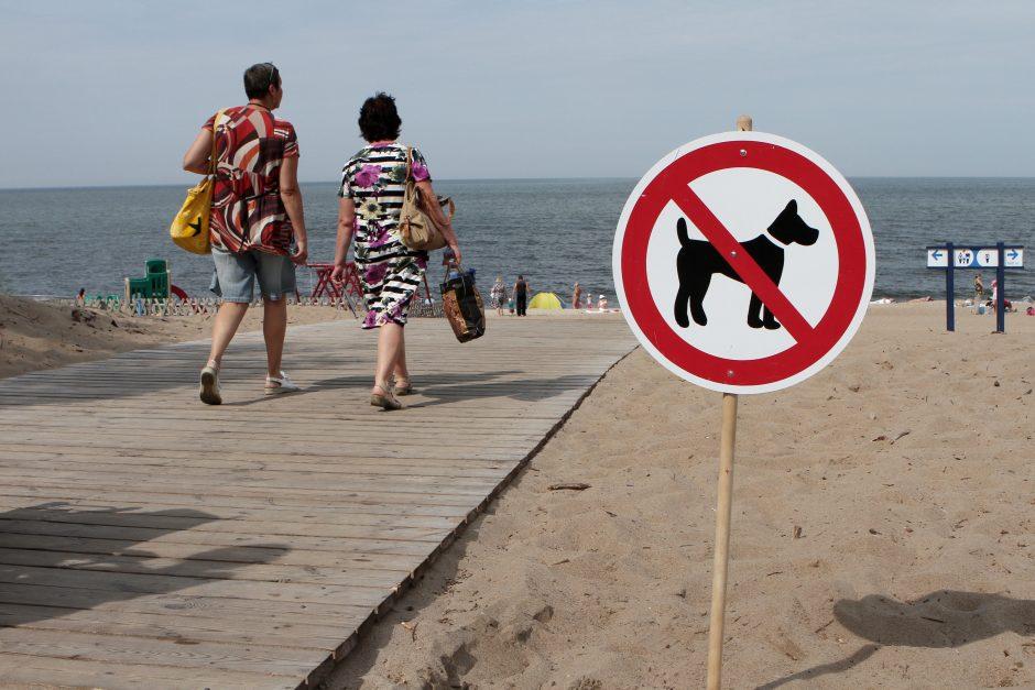 Šunų pliažą nori įrengti jau šį sezoną