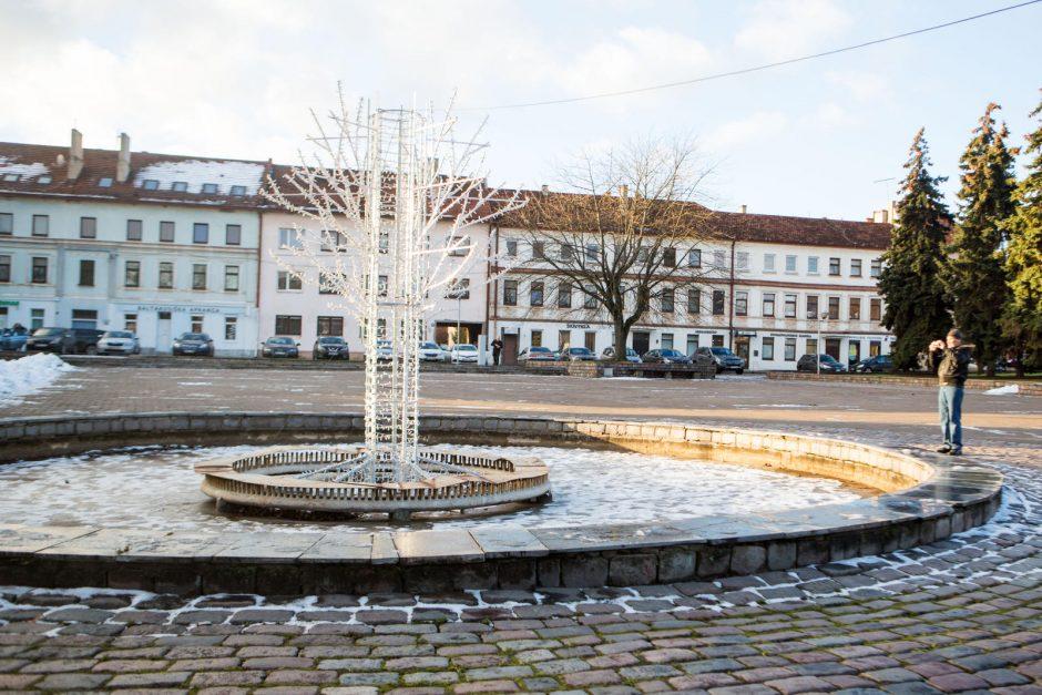 Steigiamojo Seimo aikštės vingrybės