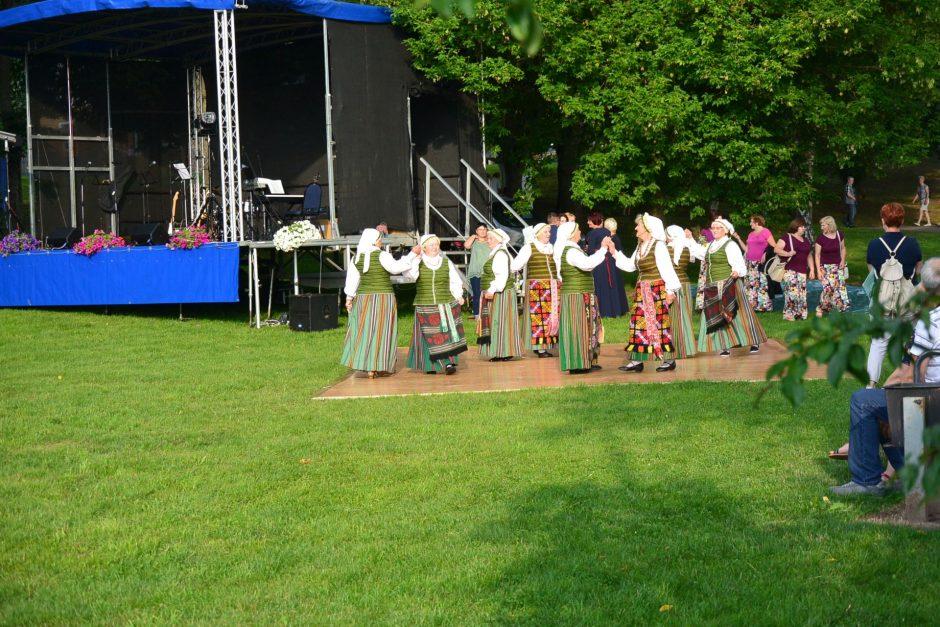 Onines Vilkijoje vainikavo smagus bendras šokis