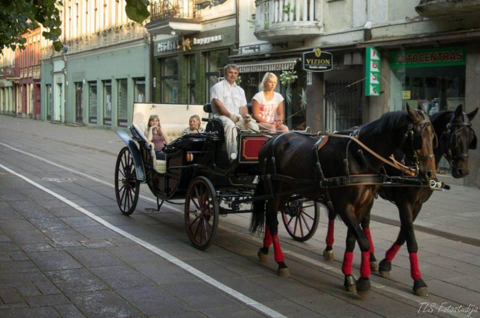 Kauno gatvėmis riedanti karieta – atrakcija ir turistams