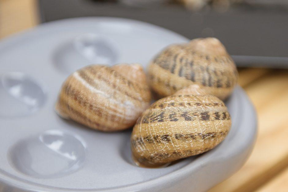 Žinomi kauniečiai Kazimiero mugėje ieško ir egzotikos, ir duonos kasdieninės