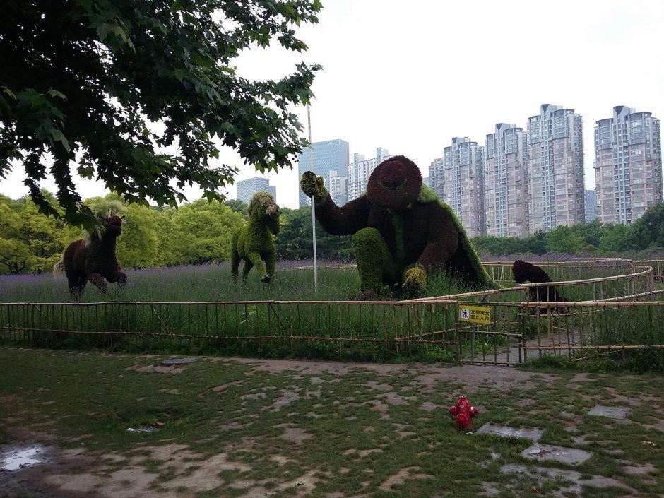 Šanchajuje dirbę klaipėdiečiai galėjo pasijusti it žvaigždės