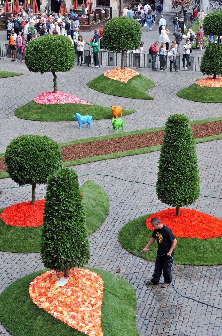 Briuselyje - Rojaus sodas iš lauro medžių ir begonijų