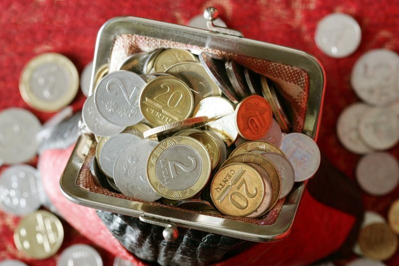 Seimo nariai biudžetą siūlo perskirstyti savo apygardų naudai