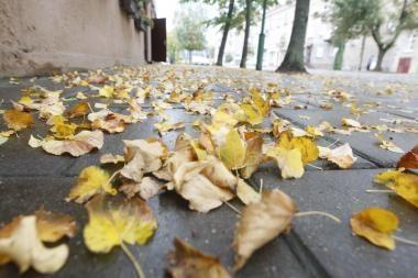 Video operatoriaus taikiklyje – rudeninė Klaipėda
