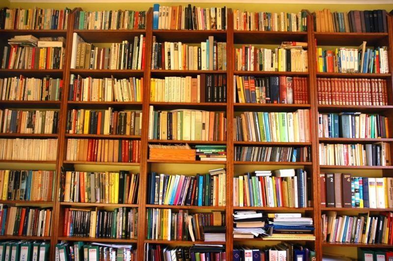 Knygų žiurkės kampelis: sapnas apie knygą