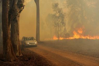 Australijoje vėl dega krūmynai