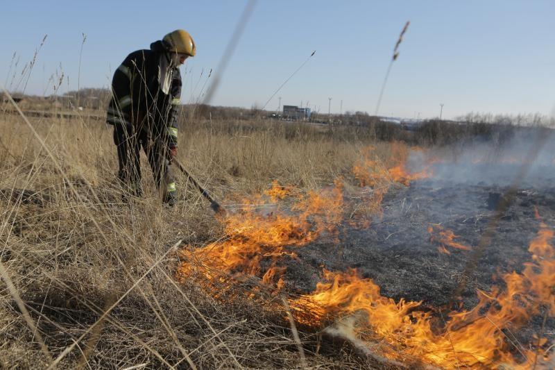 Uostamiestyje išdegė keli hektarai žolės