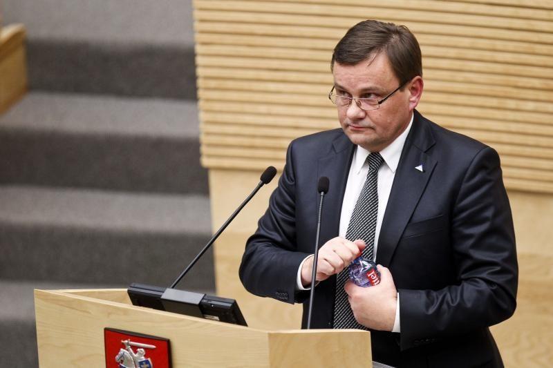 Seimo pirmininkas: 2013-ieji yra lemiamo Ukrainos apsisprendimo metai