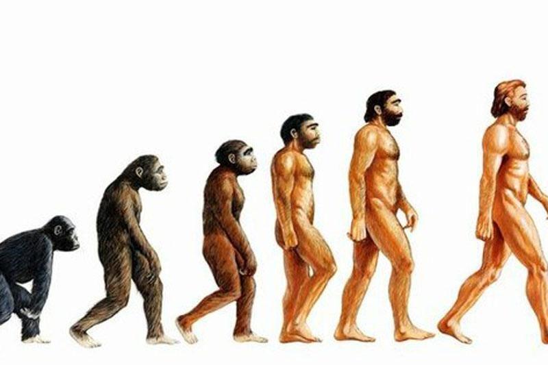 """Trys didžiosios """"Homo sapiens"""" evoliucijos mįslės"""