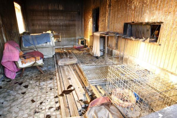 Renkama parama sudegusiems gyvūnų globos namams atkurti