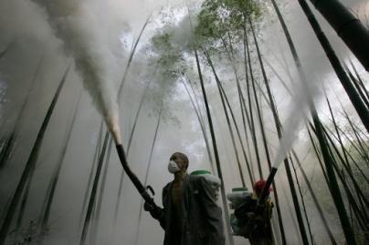 Vilniuje – didelę grėsmę keliančios pesticidų atliekos
