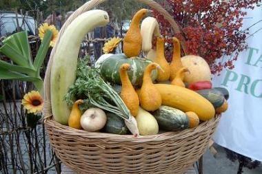 Savaitgalį specialia švente Salininkai pasitiks rudenį