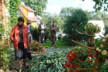 Renka gražiausias sodų bendrijas ir jų sklypus