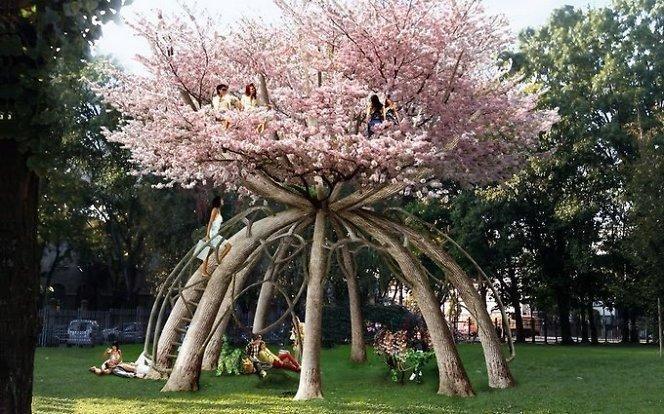 Sodininkas: medis nėra japoniškas, lietuviškas ar vokiškas