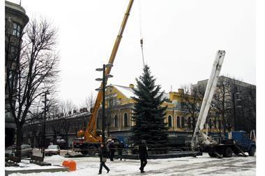 Laisvės alėjoje ir Vienybės aikštėje bus pastatytos kalėdinės eglutės