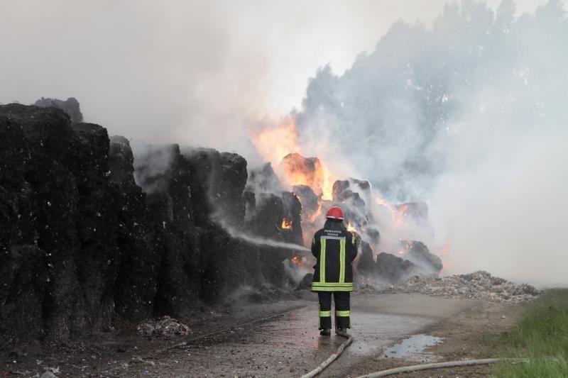 Aplinkosaugininkai aiškinasi gaisro Dumpiuose padarytos žalos dydį