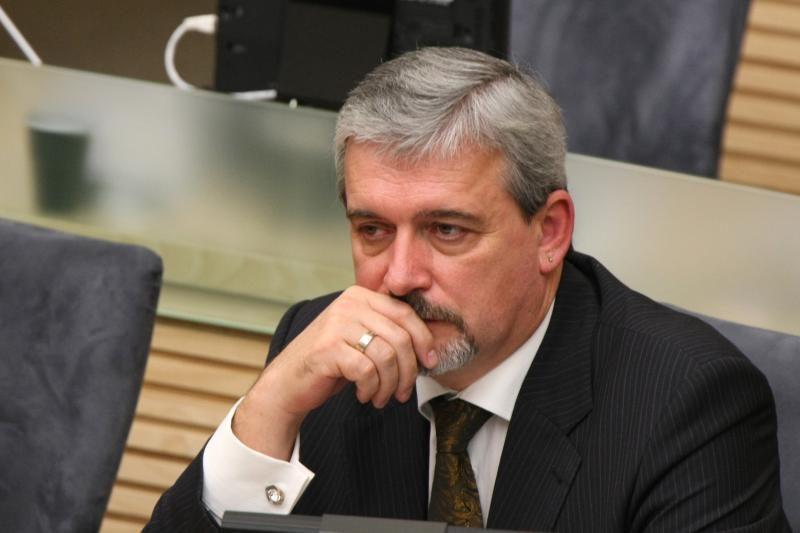 Seimo vicepirmininko posto E.Tamašauskui siūlyti neskubama