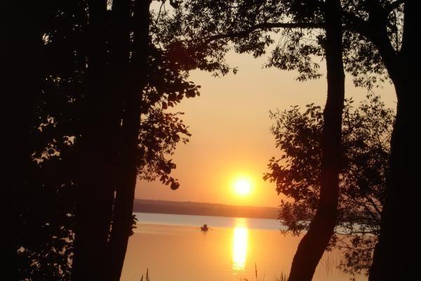 Daugų ir Rėkyvos ežeruose - per daug žarninių lazdelių