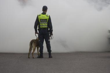 Gėjų eitynės Vilniuje: be ašarinių dujų neapsieita