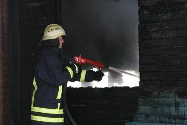 Vilniaus r. gaisre žuvo žmogus
