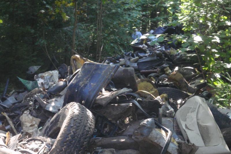 Lietuva gali pavirsti senų automobilių kapinynu?