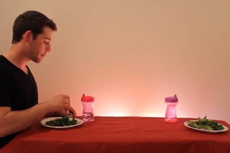 Prie pusryčių stalo – smaguriaujantys laukiniai gyvūnai